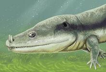 Microposaurus averyi