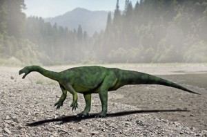 Aardonyx-Nobu-Tamura-300x198