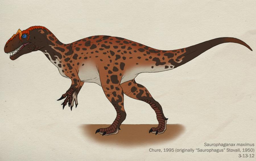 Saurophaganax dinopedia fandom powered by wikia for T green srl