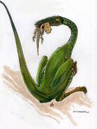 Compsognathus by vanoxymore d1xik7n-pre