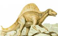 Old spinosaurus