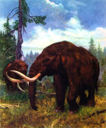 Mastodon americanus by zdenek burian 1964