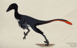 080 troodon formosus by green mamba-d5i4vrk.png