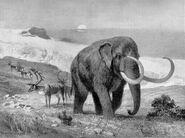Mastodon large