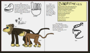 Dinatheen p animal info ref dinopithecus by tyrannosaurus90s danmmmc