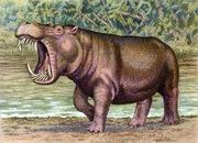 Hexaprotodon sivalensis