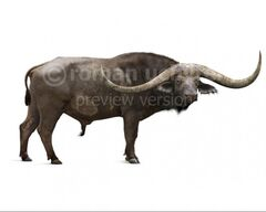 Pelorovis-antiquus-white-738x591.jpg