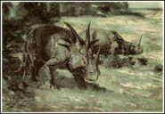 34 prean Burian styracosaurus