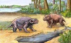 Permian Pareiasaurs