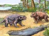 Pareiasauridae