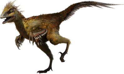 Hesperonychus WWD 3D