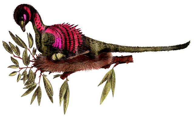 File:Sinornithosaurus haoiana.png