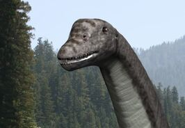 Abydosaurus NT