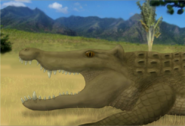 Reconstruction of Voay robustus