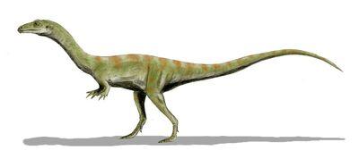 Shuvosaurus BW