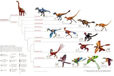 Coelurosauria
