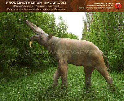 Prodeinotherium bavaricum by romanyevseyev-d51wkum