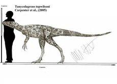 Tanycolagreus