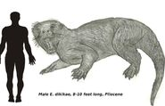 Ttfg enhydriodon by eco727 d4770r7-fullview