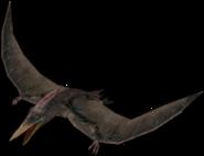 375px-Pteranodon T