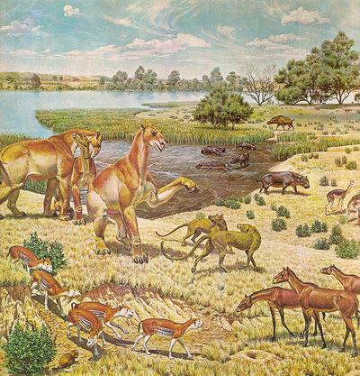 575px-Miocene