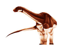 Algoasaurus-1
