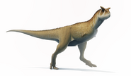 Carnotaurus for wikipedia by fredthedinosaurman-dblybpc