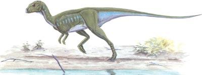 Dinosaur-images-107-resize