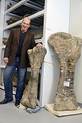 Kenneth J. Lacovara and Dreadnoughtus