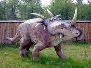 Styracosaurus Baltow 20051003 1315