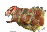 Latirhinus uitstlani by teratophoneus-d5mwxxj