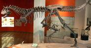 Dinossauromcnpucminas
