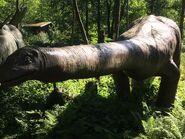 Apatosaurus-boraszoo