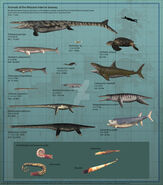 Animals of the western interior seaway by paleoguy-db9lvv9