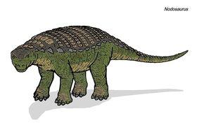 800px-Nodosaurus 500 TWA