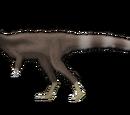 Proceratosauridae