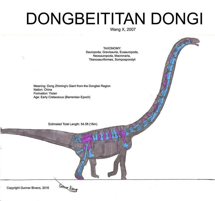 Dongbeititan-a54db4f8-84ca-4e51-8fa6-95c62d69fbf-resize-750