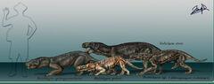 Rubidgea species by karkemish00-d5q88e7.jpg