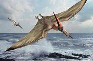 PteranodonIllustration