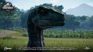 Jurassic-World-Evolution-Velociraptor