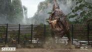 TNCarnotaurus
