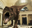 Waking the T. rex: The Story of SUE