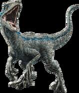 Fallen kingdom blue the velociraptor v3 by sonichedgehog2-dc9x53o