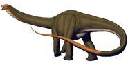 CQ apatosaurus