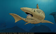 Helicoprion 2