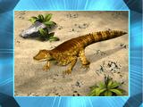 Protosuchus