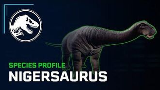 Species Profile - Nigersaurus