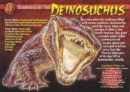 Deinosuchus front