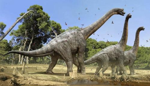 File:SibirosaurusIllustration.jpg