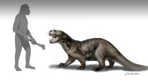 Enhydriodon dikikae | Dinopedia | Fandom